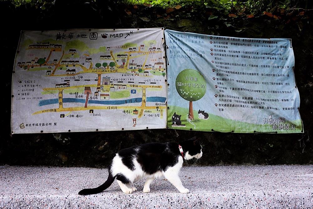 2012 Taipei Yilan Hautong Walk 059