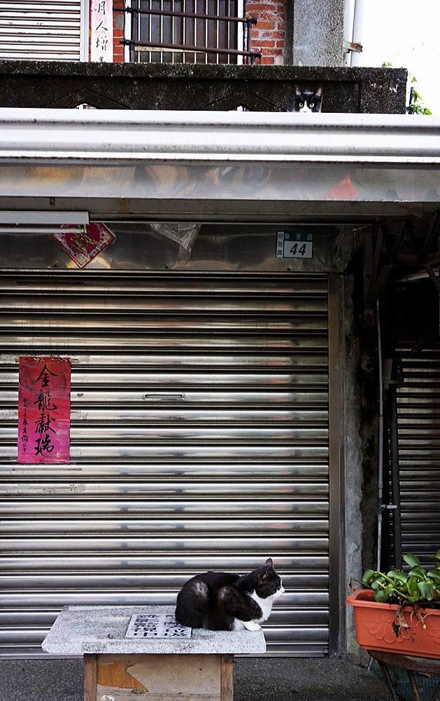 2012 Taipei Yilan Hautong Walk 078