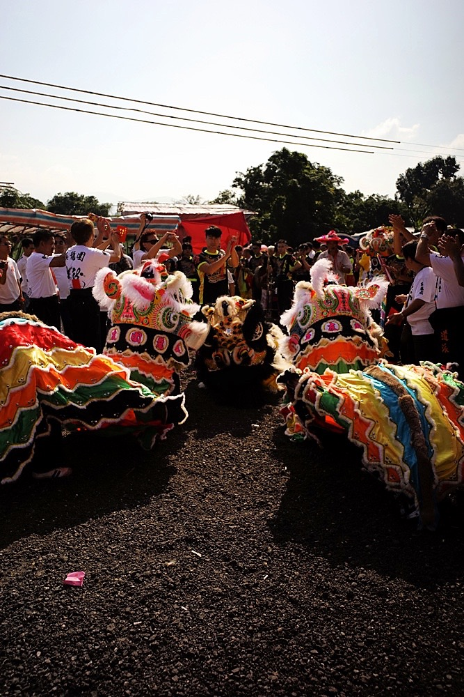 The 33rd Kam Tin 10 Year Festival Amp Rituals 2015 117