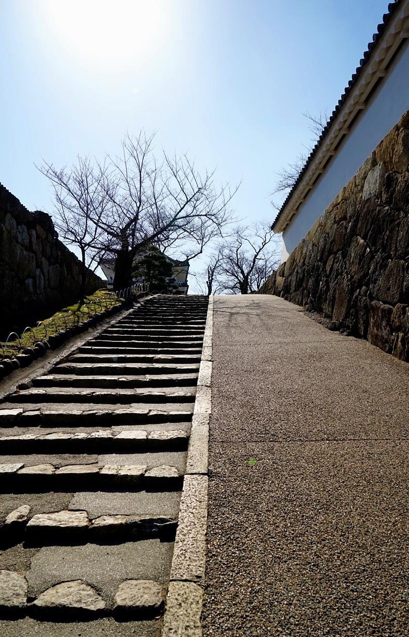 A Walk In Early 2017 Japan Kansai Area 012