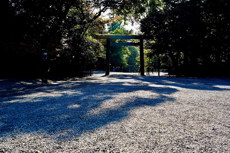 A Walk In Late 2017 Japan Chubu Nara Area 10