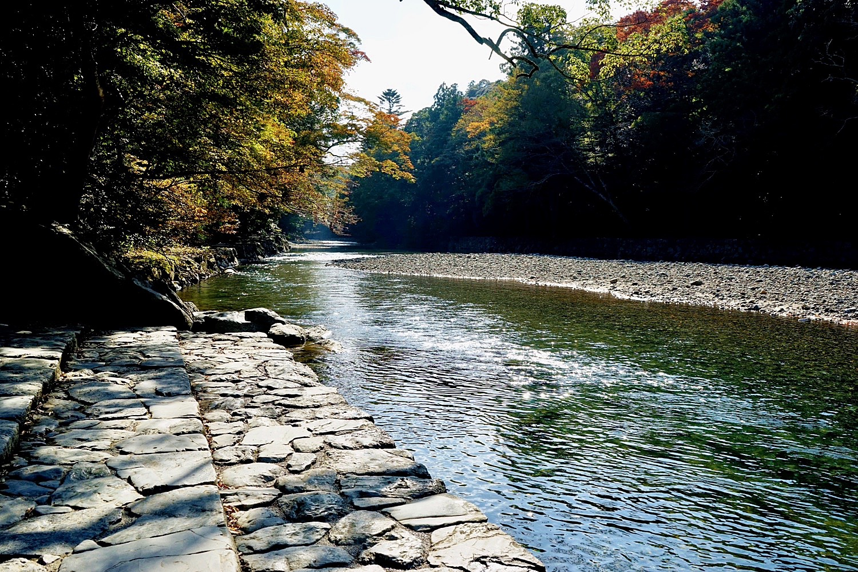 A Walk In Late 2017 Japan Chubu Nara Area 11