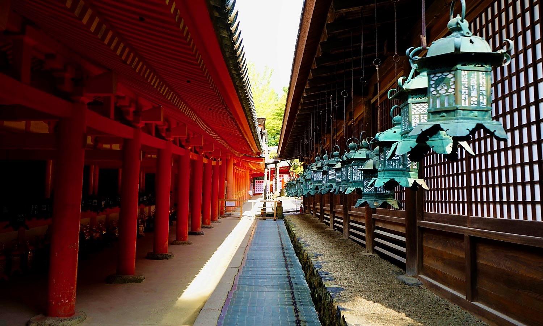 A Walk In Late 2017 Japan Chubu Nara Area 36
