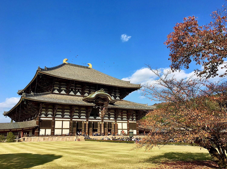A Walk In Late 2017 Japan Chubu Nara Area 62
