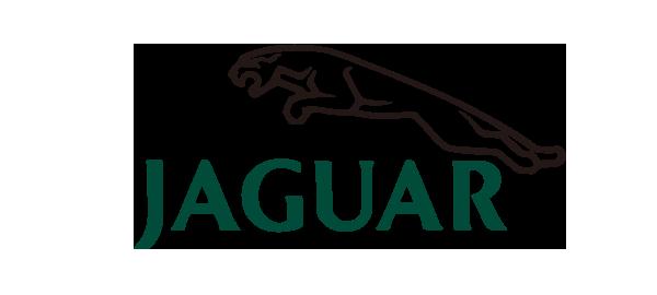 Client Logo Color 0030 Jaguar