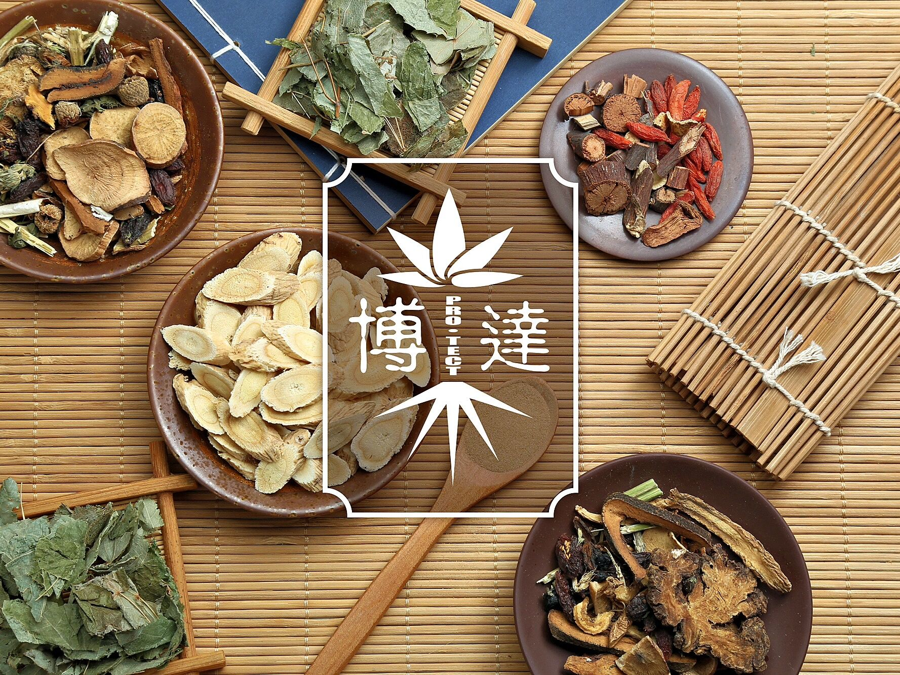 Pro Tect Traditional Chinese Medicine Ancient Medical Book Bamboo Perfectlyclear