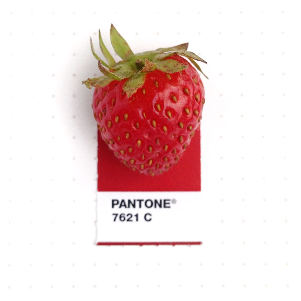bridging-life-and-design-in-15-pantone-color-matches-04