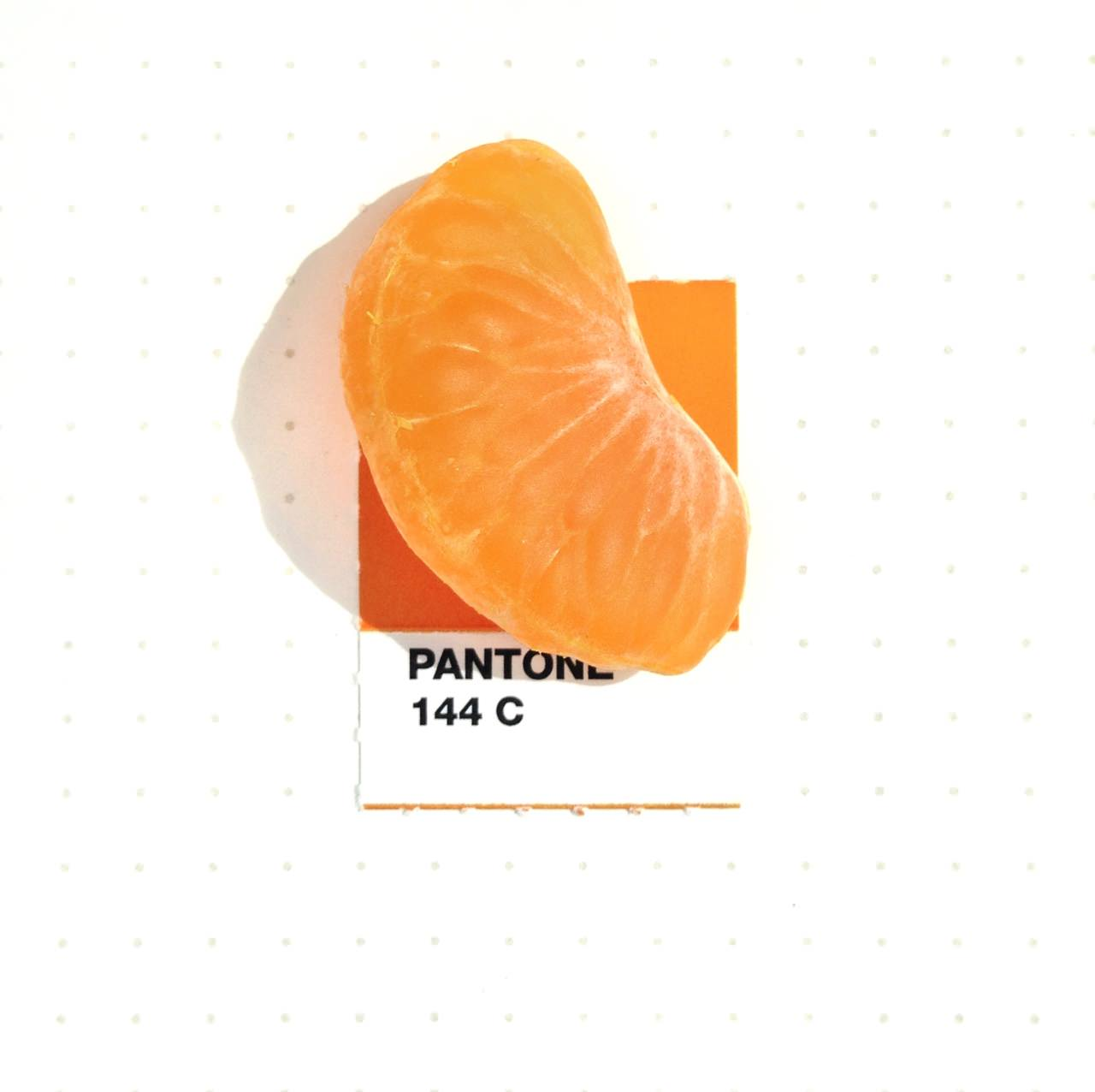 bridging-life-and-design-in-15-pantone-color-matches-06
