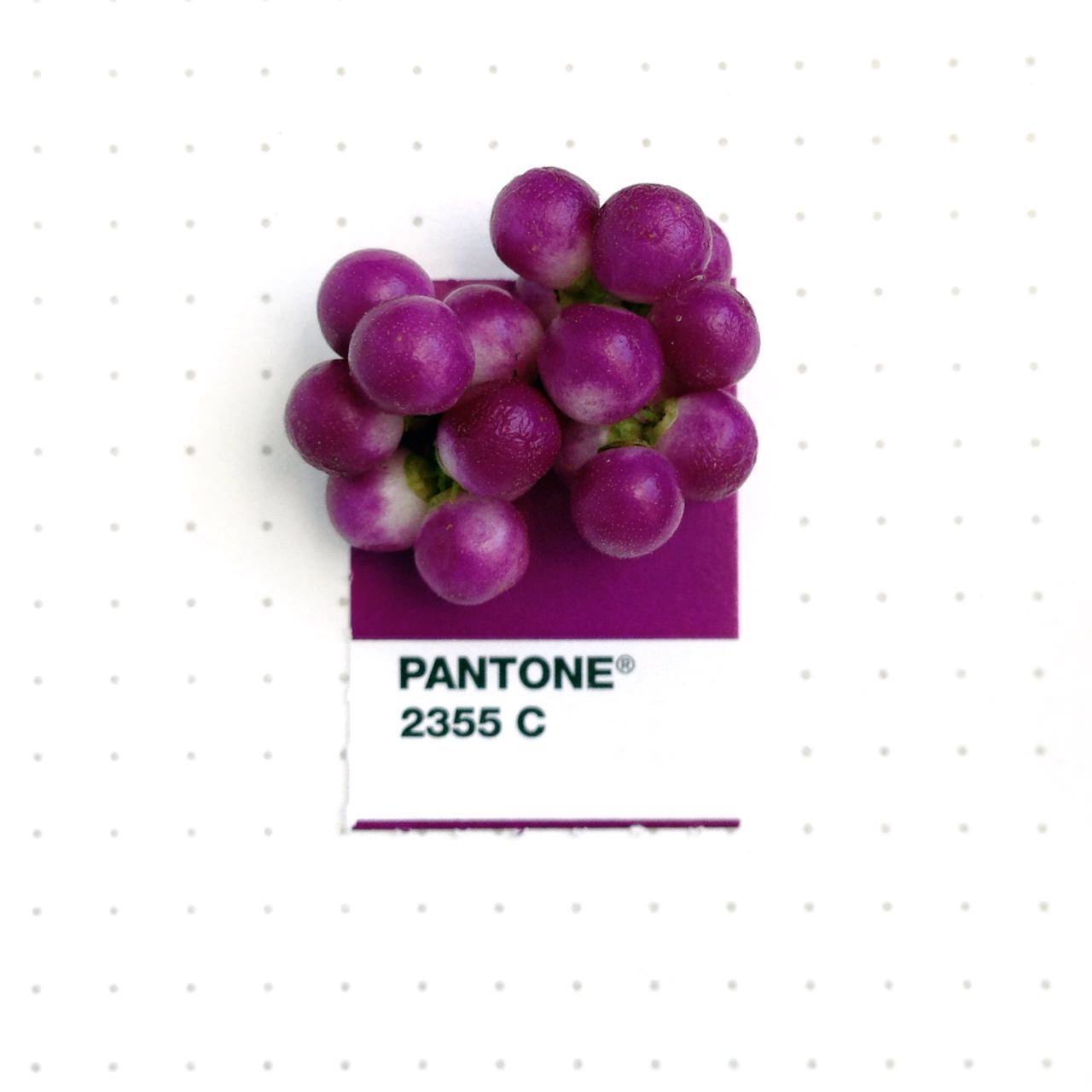 bridging-life-and-design-in-15-pantone-color-matches-15