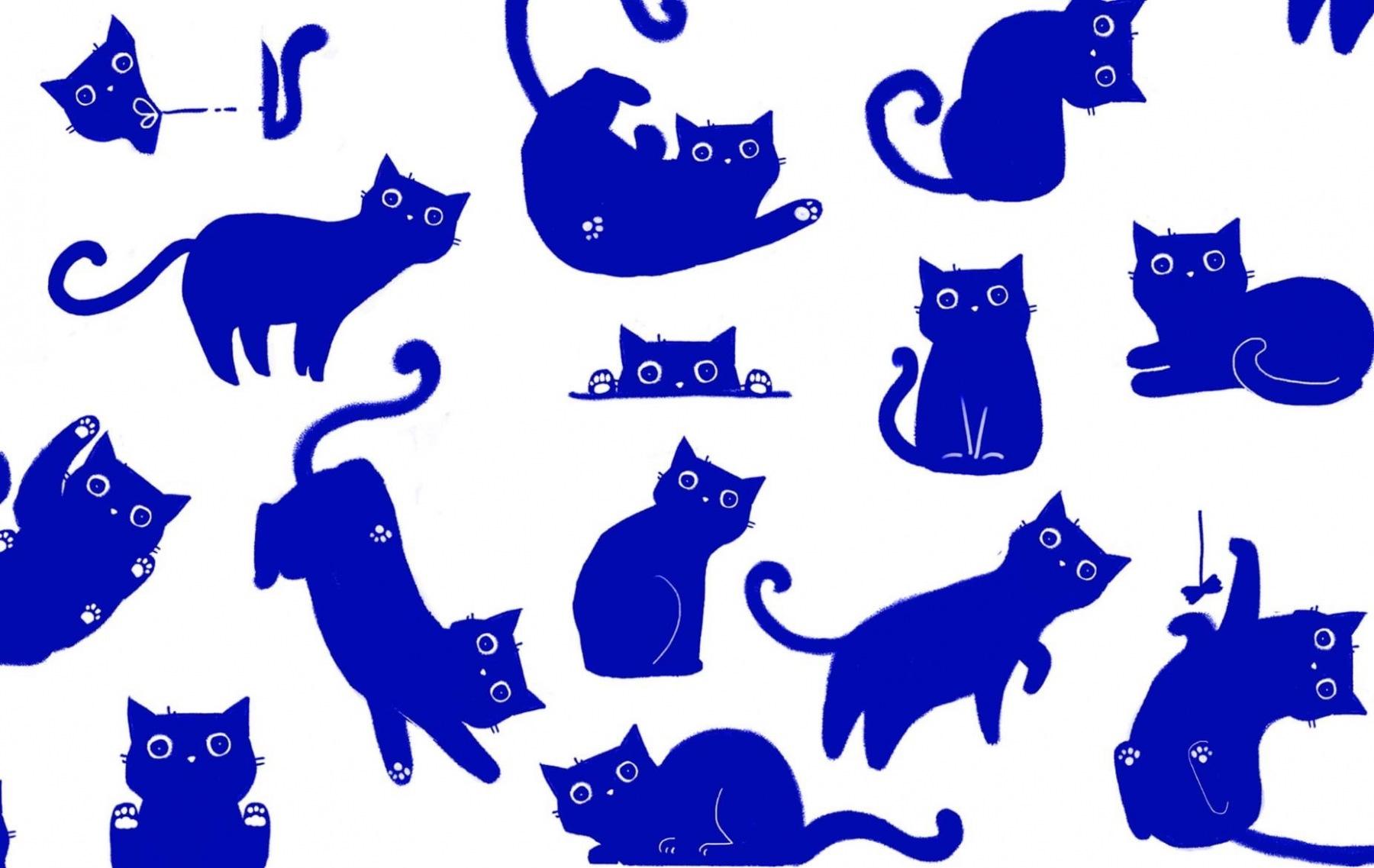 cat-milk-package-04
