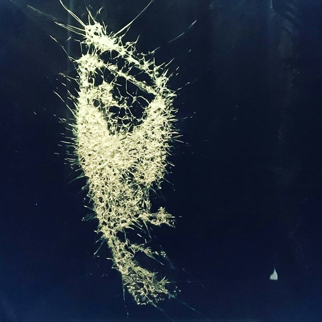 Shattered-Glass-Portraits-by-Simon-Berger-11