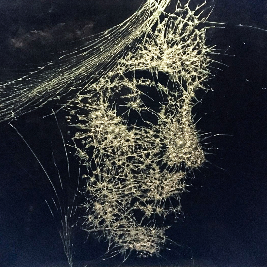 Shattered-Glass-Portraits-by-Simon-Berger-13