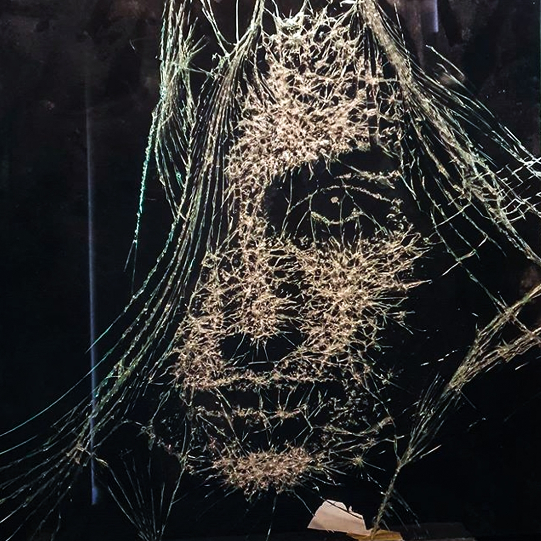 Shattered-Glass-Portraits-by-Simon-Berger-17